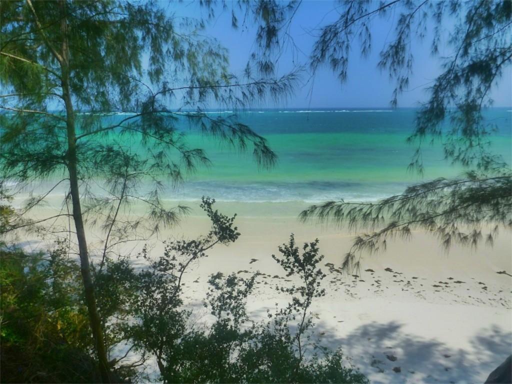 p1010010_viKenia-kole-kole-baobab-beach-resort